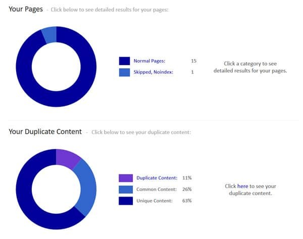 Duplicate content audit results